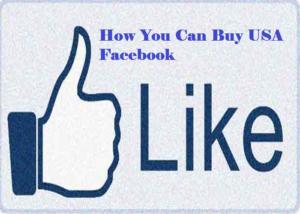 USA Facebook Likes